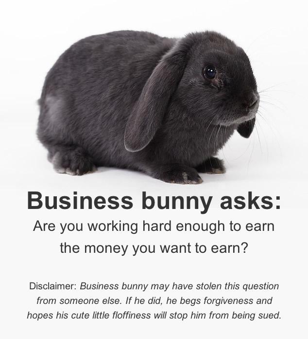 business-bunny