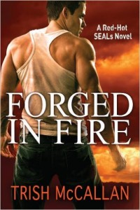 Cover for Forged in Fire