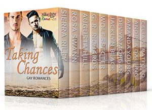 Cover for Taking Chances: Gay Romances